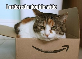 Box Kitteh is Not Happy With Your Offering