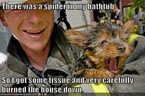 There was a spider in my bathtub  So I got some tissue and very carefully burned the house down.