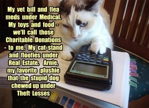 Accounting Cat gets creative.