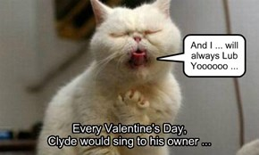 Every Valentine's Day,  Clyde would sing to his owner ...