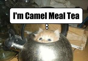 Camel Meal Tea