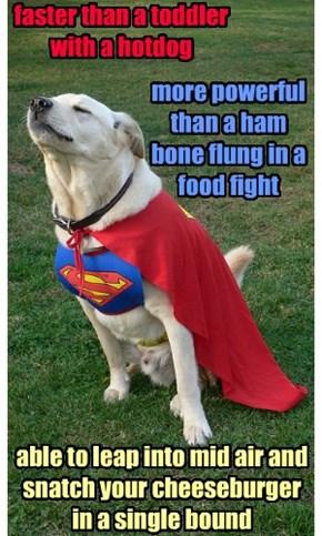 He's SuperDog!