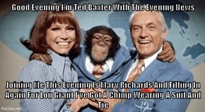 Good Evening I'm Ted Baxter With The Evening News  Joining Me This Evening Is Mary Richards And Filling In Again For Lou Grant I've Got A Chimp Wearing A Suit And Tie