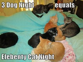 3 Dog Night                 equals  Elebenty Cat Night