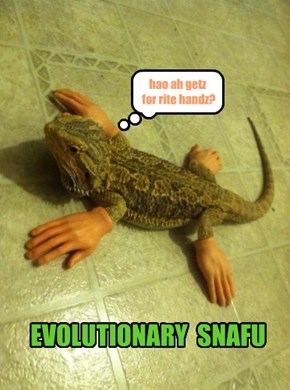 EVOLUTIONARY  SNAFU