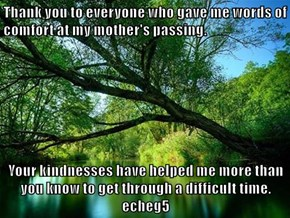 Thank you to everyone who gave me words of comfort at my mother's passing.  Your kindnesses have helped me more than you know to get through a difficult time.    echeg5