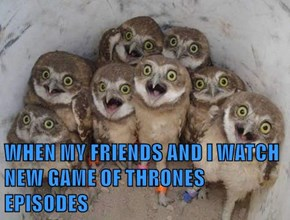 WHEN MY FRIENDS AND I WATCH NEW GAME OF THRONES EPISODES