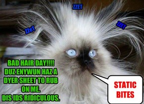 BAD HAIR DAY!!!