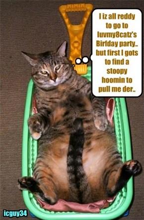Happy Birfday to a wunnerful cheezfrend, luvmy8catz!! I hopes yu habs lots ob Cake an' Prezzies!