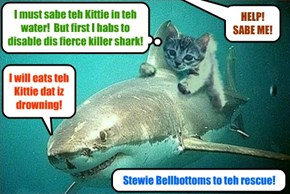 KCAT BREAKING NEWS - This rare video surfaced of KKPS Lifeguard Stewie Bellbottoms as he saves a drowning kittie dat sharks are attempting to eat!