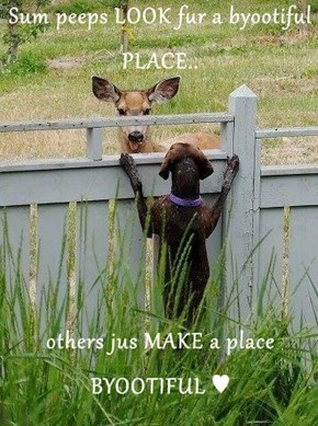 Sum peeps LOOK fur a byootiful PLACE..   others jus MAKE a place BYOOTIFUL ♥
