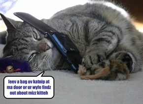 leev a bag ov katnip at ma door or ur wyfe findz out about mizz kitteh