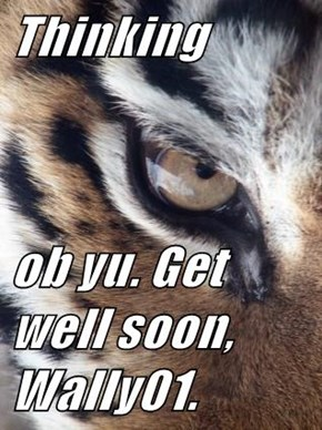 Thinking  ob yu. Get well soon, Wally01.