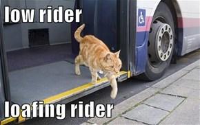 low rider  loafing rider