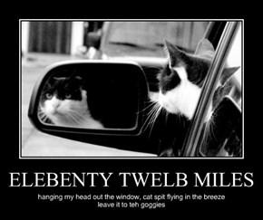 ELEBENTY TWELB MILES