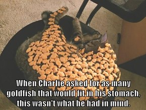 When Charlie asked for as many goldfish that would fit in his stomach, this wasn't what he had in mind.