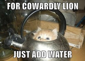 FOR COWARDLY LION  JUST ADD WATER