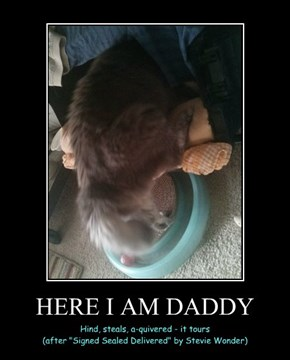 HERE I AM DADDY