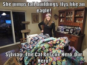 She jumps tall buildings, flys like an eagle!   Sylviag...The Cat Rescue Hero. Our Hero!