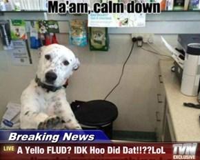 Breaking News - A Yello FLUD? IDK Hoo Did Dat!!??LoL