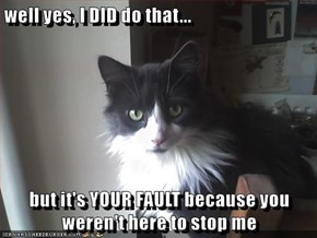 well yes, I DID do that...  but it's YOUR FAULT because you weren't here to stop me