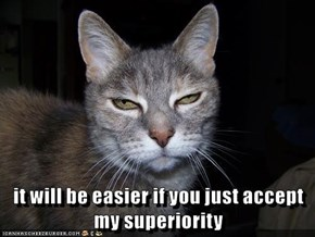 it will be easier if you just accept                                   my superiority