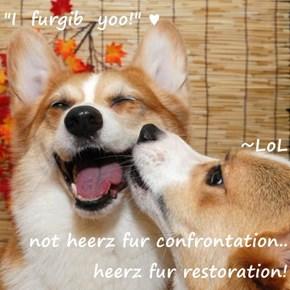 """I  furgib  yoo!"" ♥                                  ~LoL not heerz fur confrontation.. heerz fur restoration!"
