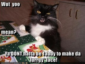 Wut  yoo mean? Ya DONT hafta be Tabby to make da *furrgy* face!