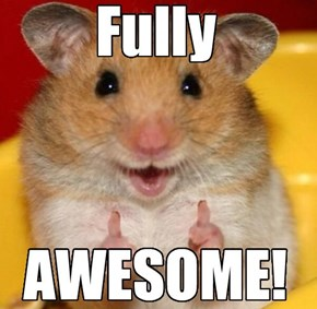 Awesome Hampster Rates You. . .