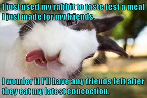 I just used my rabbit to taste test a meal I just made for my friends.  I wonder if I'll have any friends left after they eat my latest concoction.