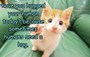 sometimes humans need a hug.