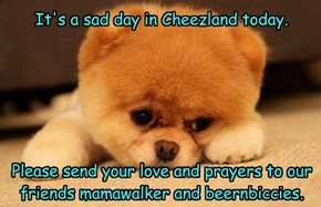 It's a sad day in Cheezland today.