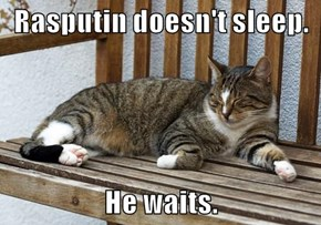 Rasputin doesn't sleep.  He waits.
