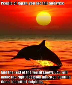 People of Japan, you are fair and wise  And the rest of the world knows you will make the right decision and stop hunting these beautiful dolphins.