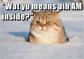 """""""Wat yu means aih AM inside?"""""""