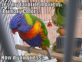 Yes, my favorite movie is 'Primary Colors.'  How'd you guess?