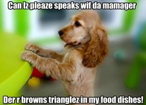 Can Iz pleaze speaks wif da mamager