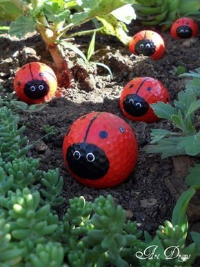 For my friend, LittleAPC who is a ladybug lover