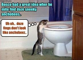 Inspiration: KKPS kitties got it..