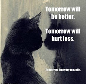 Tomorrow will be better.  Tomorrow will hurt less.