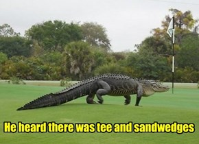 Why did the ginormous gator cross the golf course?