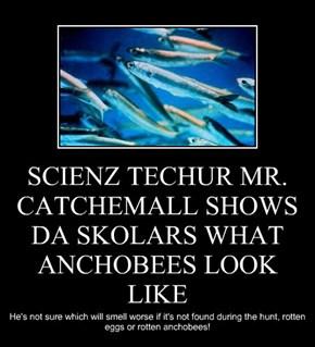 SCIENZ TECHUR MR. CATCHEMALL SHOWS DA SKOLARS WHAT ANCHOBEES LOOK LIKE