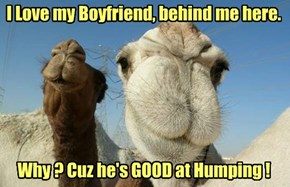IT'S HUMP DAY!!!
