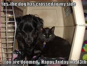 Yes, the dog has crossed to my side  You are doomed - Happy Friday the 13th