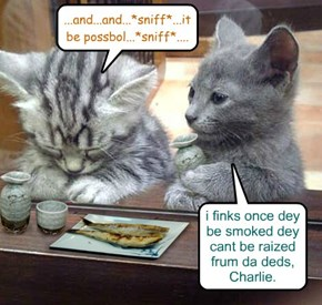 Smoking be bad fur da helths!