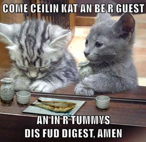 COME CEILIN KAT AN BE R GUEST  AN IN R TUMMYS                                         DIS FUD DIGEST, AMEN