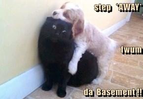 step   *AWAY* fwum da  Basement !!