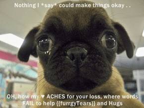 Nothing I *say* could make things okay . .                             ' OH, how my ♥ ACHES for your loss, where words FAIL to help {{furrgyTears}} and Hugs