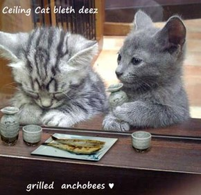 Ceiling Cat bleth deez         grilled  anchobees ♥
