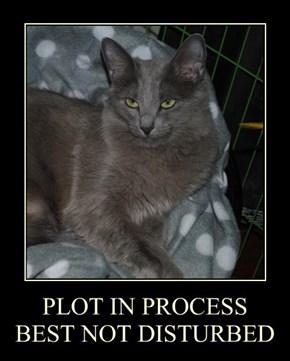 PLOT IN PROCESS BEST NOT DISTURBED
